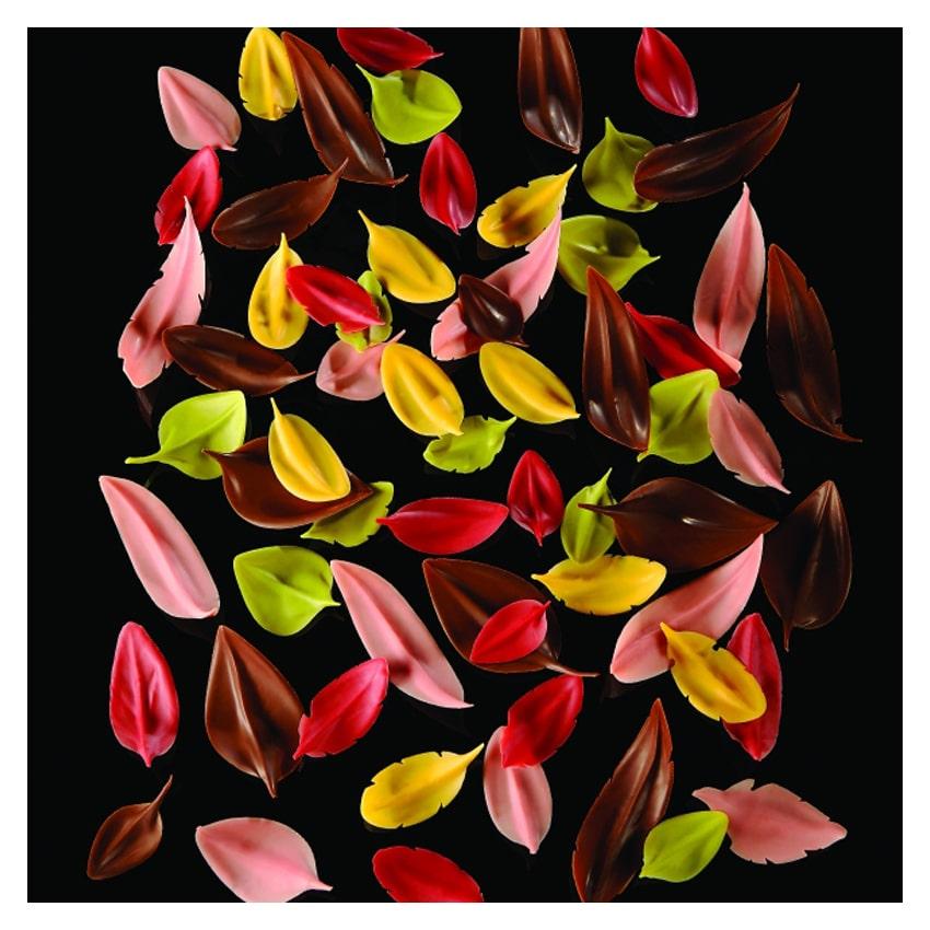 Flychoc CH8 coltello per foglie/piume cioccolato Pavoni