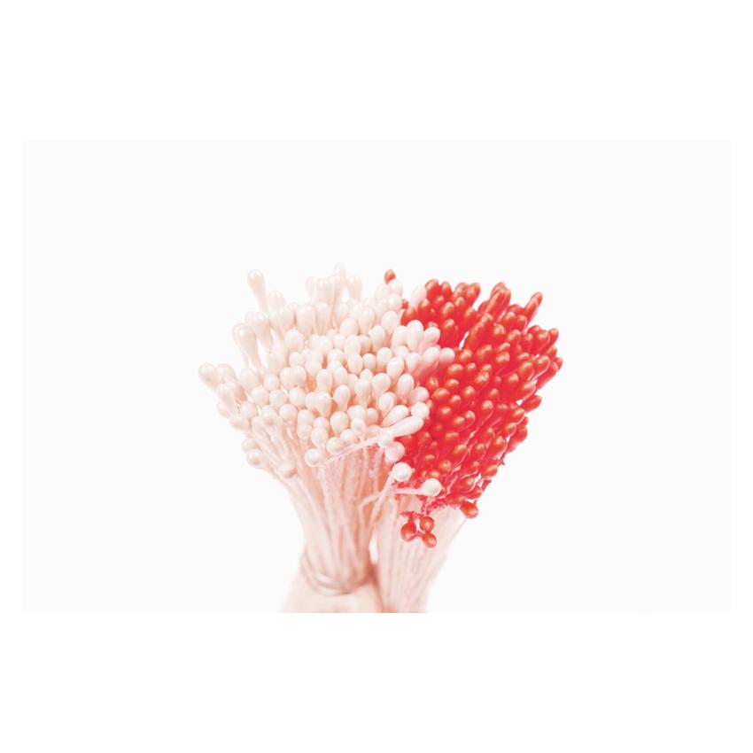 Confezione 288 pistilli bianco perla rosso Decora