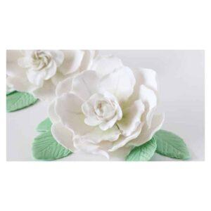 Kit 9 tagliapasta gardenia Decora