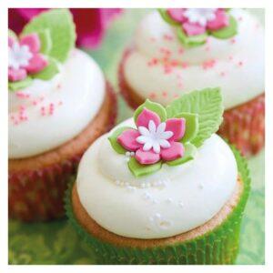 Preparato per Cupcakes senza glutine FunCakes