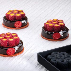 stampo in silicone mini scarlet pavoni